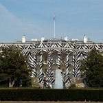 Zebra-White-House-38278